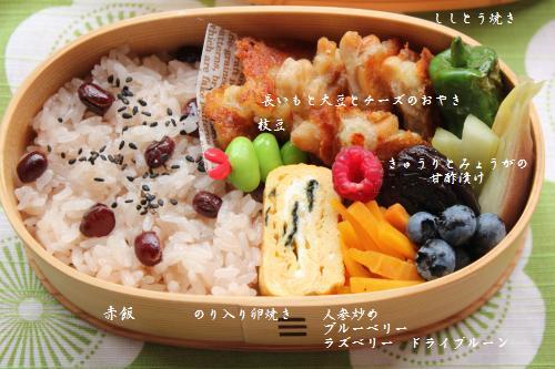 長いもと大豆とチーズのおやき弁当3