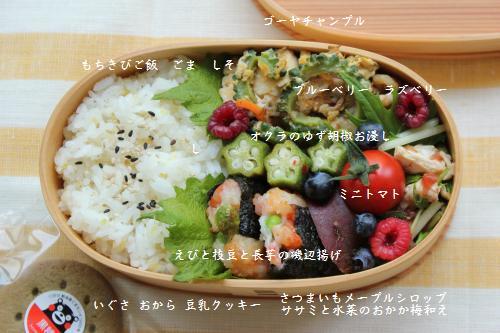 ゴーヤチャンプル&えびと枝豆の磯辺揚げ弁当2