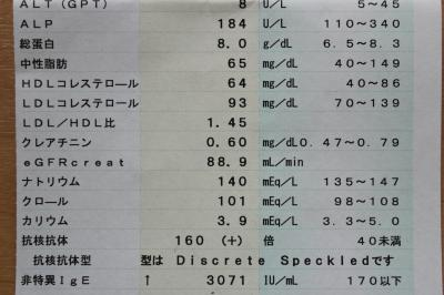 アレルギー検査1