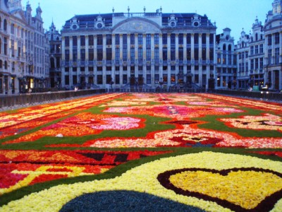Carpet2014-1.jpg
