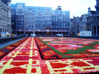 Carpet2014-2.jpg