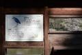 戸神調整池野鳥観察デッキDSC_3766s