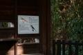 戸神調整池野鳥観察デッキDSC_3776s