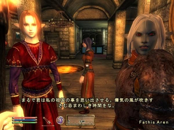 Oblivion魔法戦士プレイ日記 ブラブィル モロウィンドを連想?