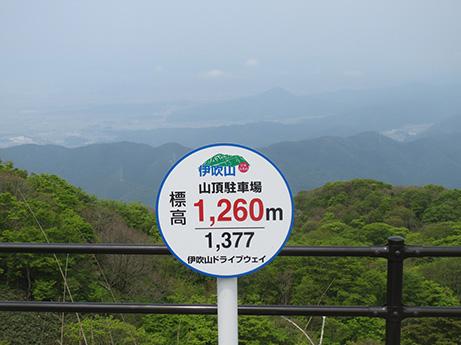 2014 5 25 伊吹山11
