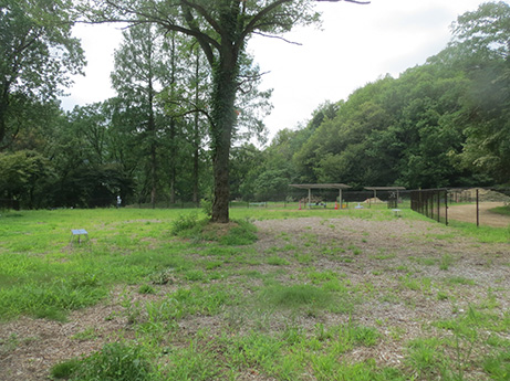 2014 7 20 畜産センター1