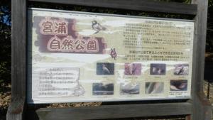 minokamoaruki (7)