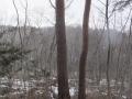 雪の舞う山