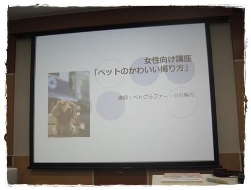 EOS1.jpg