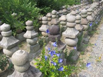 石塔の脇に咲く花