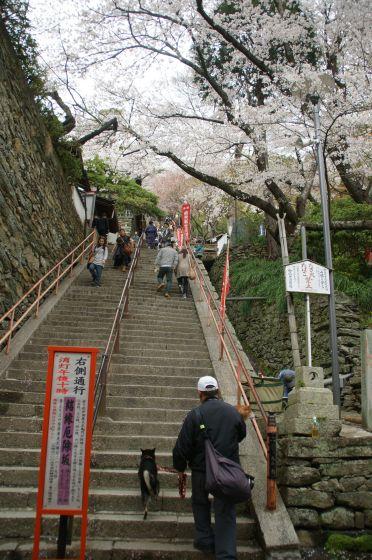 和歌山 紀三井寺
