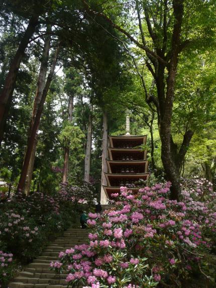 室生寺・五重の塔