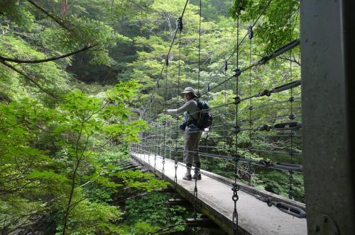 シオカラ谷のつり橋