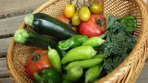 高橋さん家の野菜