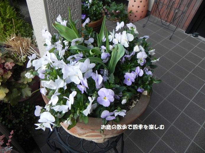 yoseue12_2014041309325029d.jpg