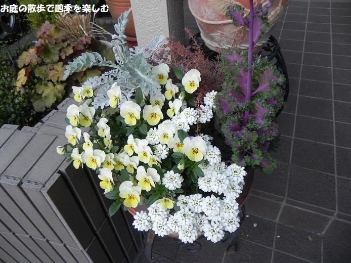 yoseue21_20140413093331256.jpg