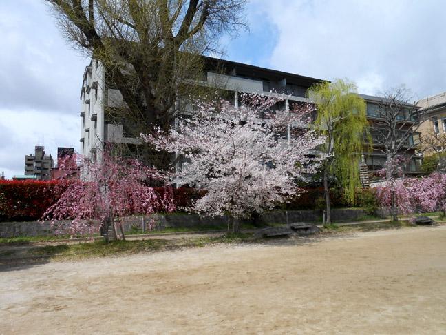 2014-0406-N5633.jpg