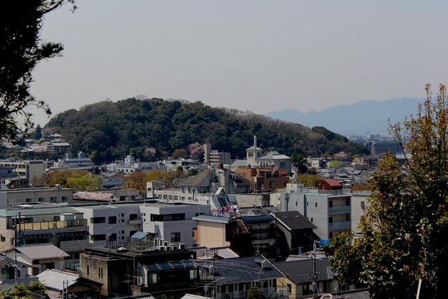 s9-2014-0407-x-7560.jpg