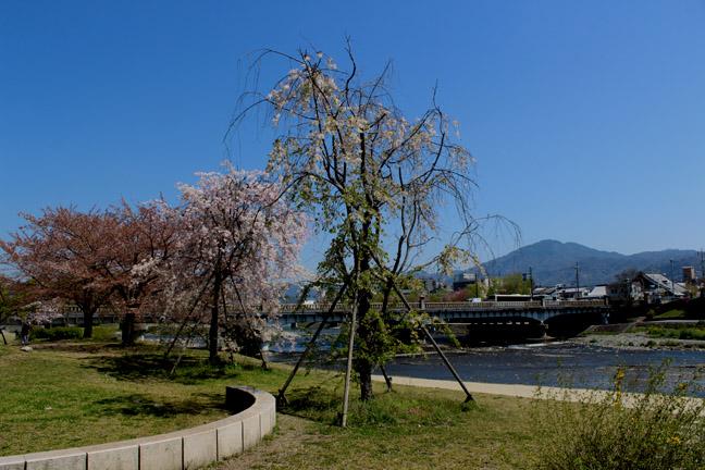 s9-2014-0415-x-8662.jpg