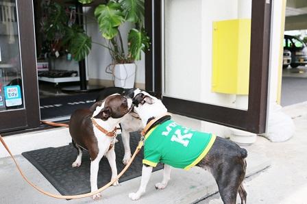 沖縄20140329 197