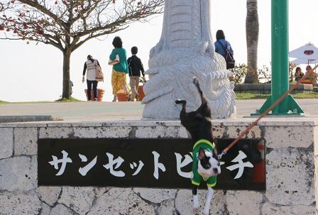 沖縄20140329 372