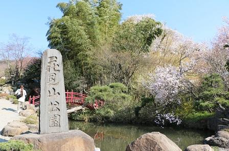 お花見2014 190