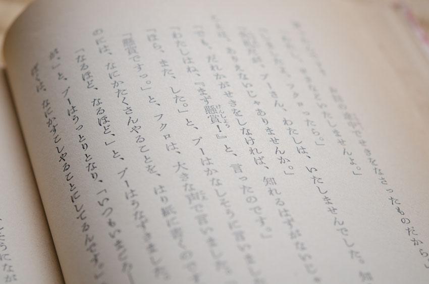 bashi_140612_02.jpg