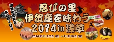 201411iga.jpg