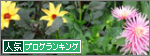 blog_flower.png