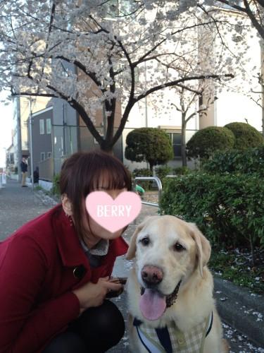 blog12_20140628233707c00.jpg