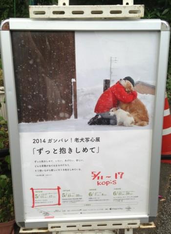 blog1_2014052122424436d.jpg