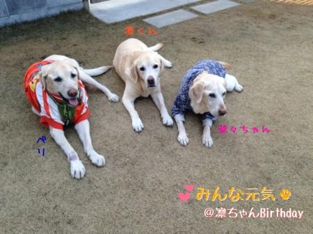blog4_2014033000073462f.jpg