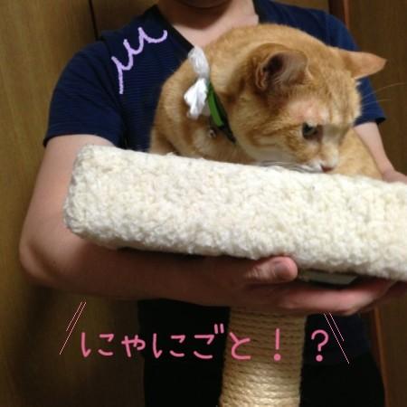 blog6_201405212248416e7.jpg