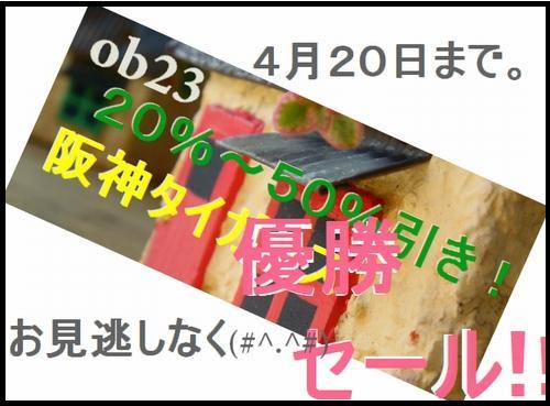 DSC09721-2.jpg