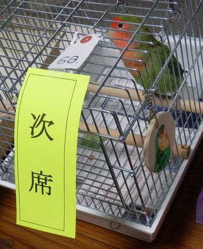 13_いちごちゃん