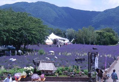 1_八木崎公園