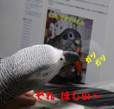 1_ほしい