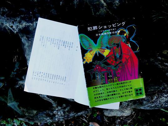 14.8.20梅干ほかCIMG1050 (19)