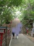 高尾山の男坂
