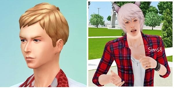 Sims4Demo_Toma02.jpg