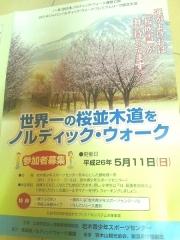 桜並木ノルデ_600