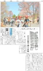 桜並木記事_800
