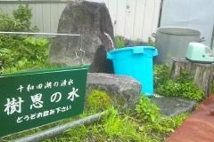 十和田w (10大川岱)_600