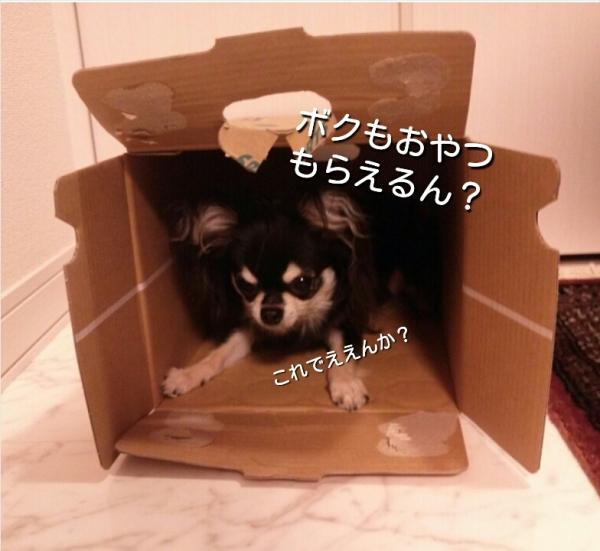20140809231937da2.jpg