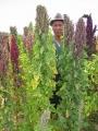 450px-Quinoa_farmer_in_Cachilaya[1]