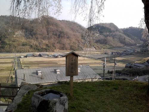 sakura-goku3.jpg