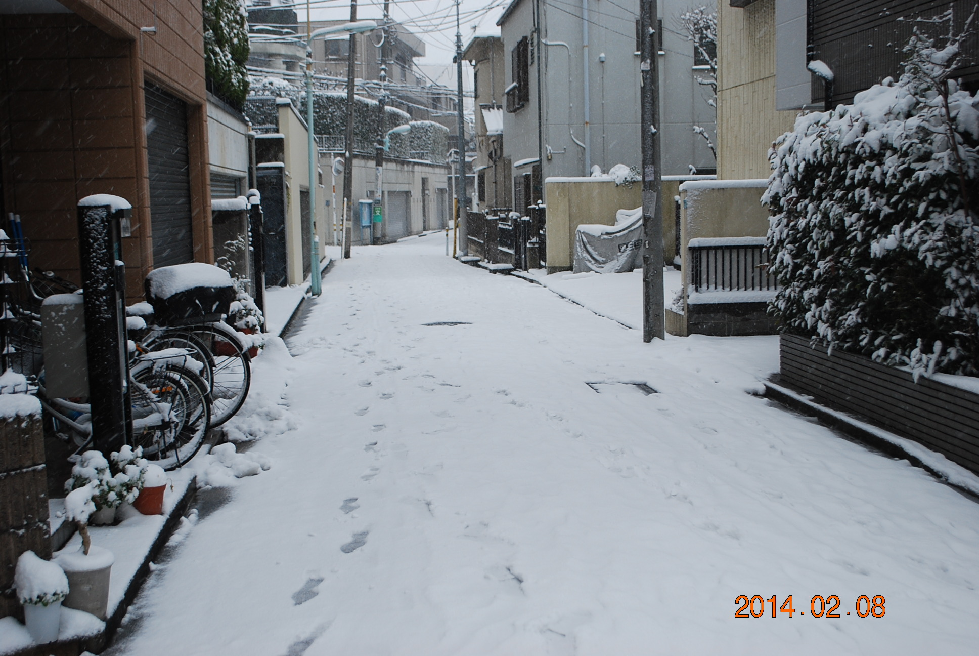 2014_0208_142758-DSC_2500.jpg