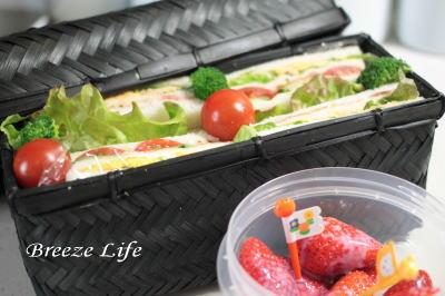 sandwich140328.jpg