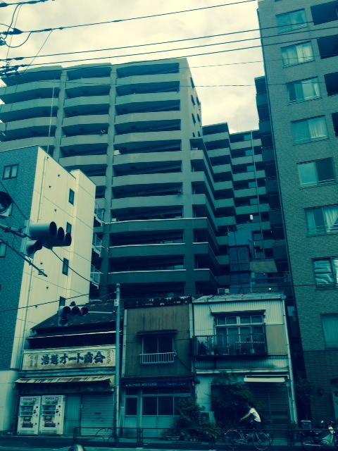 上野っぽい商家とマンションの混交