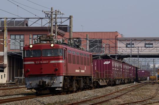 DSC_7602.jpg